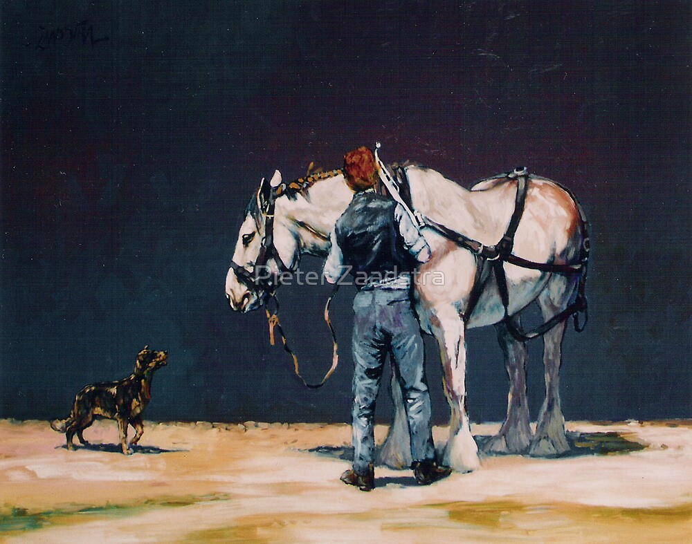 Heavy Grey Horse Harnessing by Pieter Zaadstra