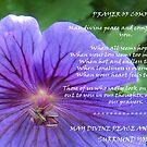Prayer of Comfort by sarnia2