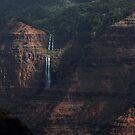 Waimea Canyon _ Hawaii by Barbara Burkhardt