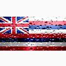 «Bandera de hawaii - gotas de lluvia» de Dr-Pen