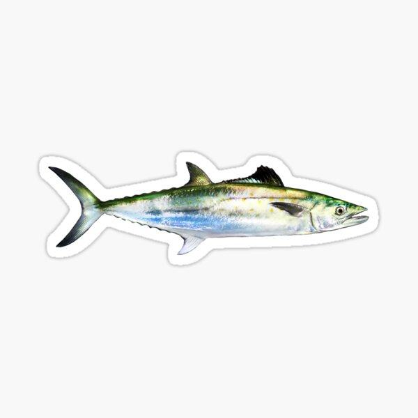 Spanish Mackerel Sticker