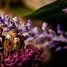 Miniatures in Conversation by fruitfulart