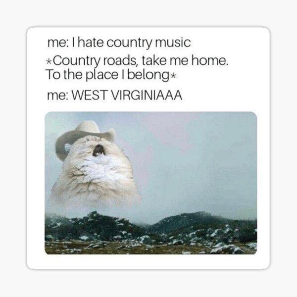 """Country Roads Cat Meme"" Sticker by denimiguana | Redbubble"