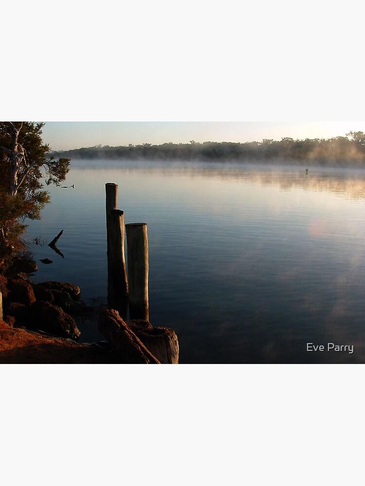 Blackwood River by AdamsWife