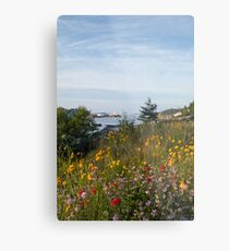 Cove Flowers Metal Print