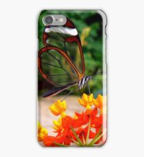 GLASSWING BUTTERFLY FEEDING ON NECTAR iPhone Case/Skin
