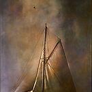 Shamrock II -1901  by andy551