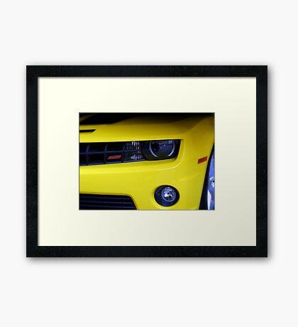 Yellow Camero Framed Print