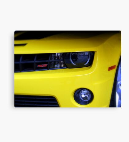 Yellow Camero Canvas Print