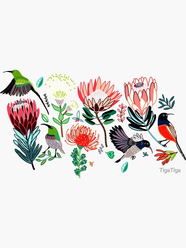 Sunbirds & Proteas On Grey by TigaTiga