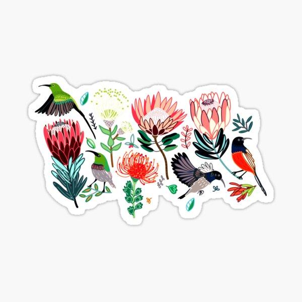 Sunbirds & Proteas On Grey Sticker