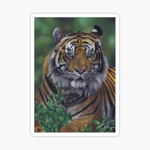 Eye of the Tiger by Karie-Ann Cooper Sticker