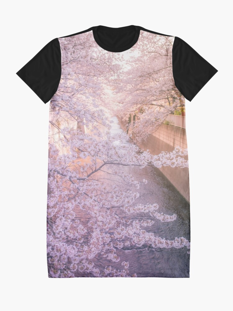 Alternate view of Sakura tree over Kanda Gawa river Graphic T-Shirt Dress