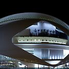 Palau De Les Arts - CAC - at night II by Valfoto