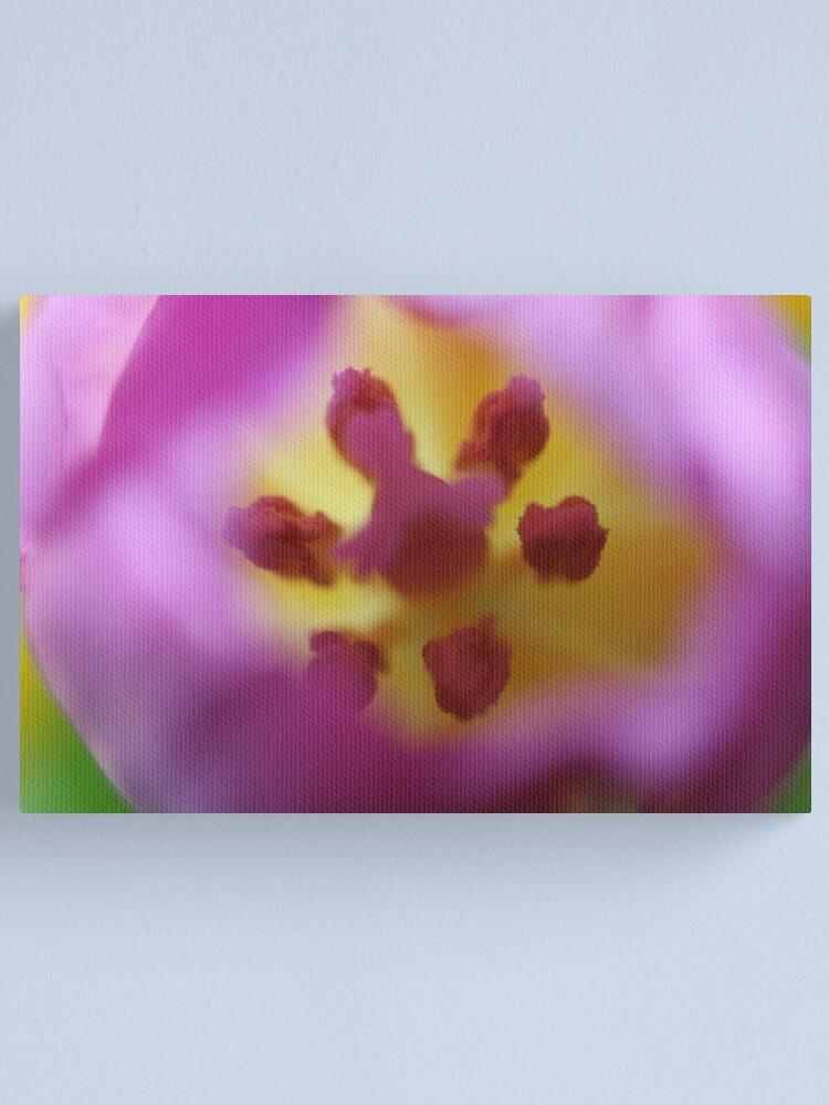 Alternate view of B2 Canvas Print