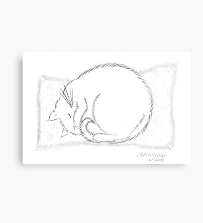 Snoozing Socks Canvas Print