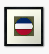 United States Army Forces Command Framed Print