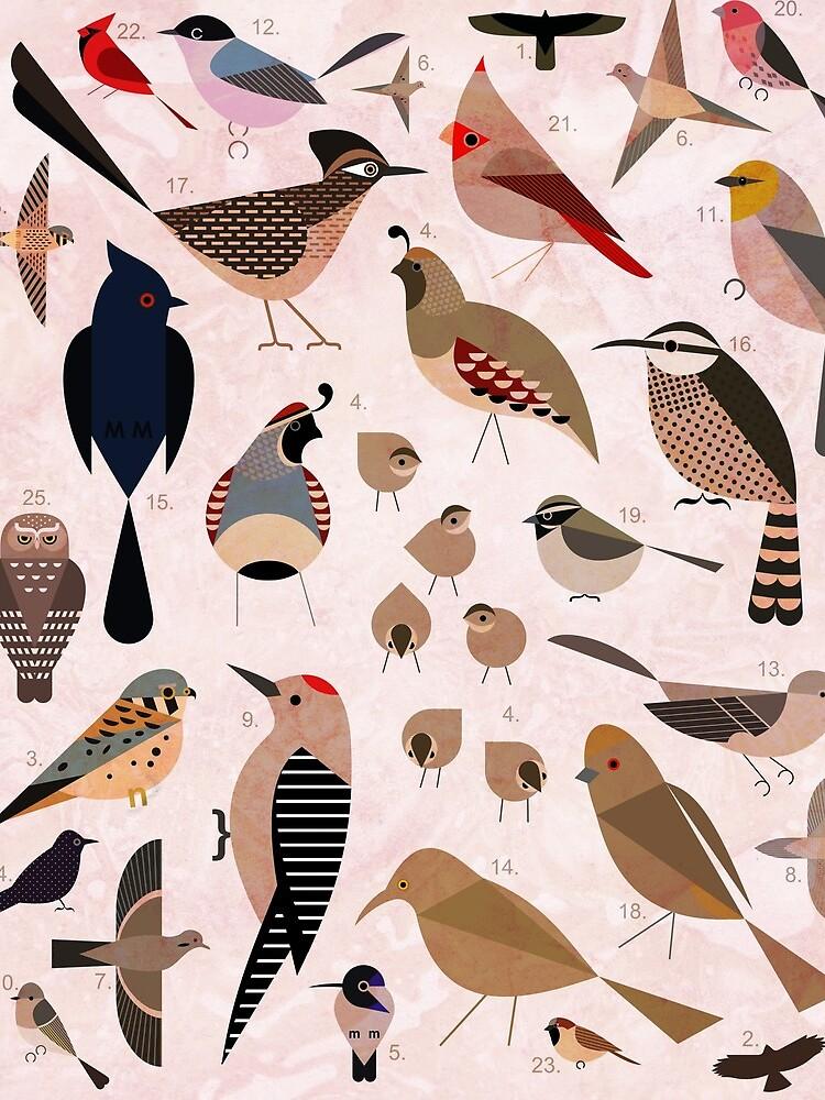 Sonoran Birds by scottpartridge