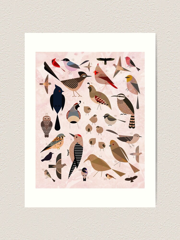 Alternate view of Sonoran Birds Art Print