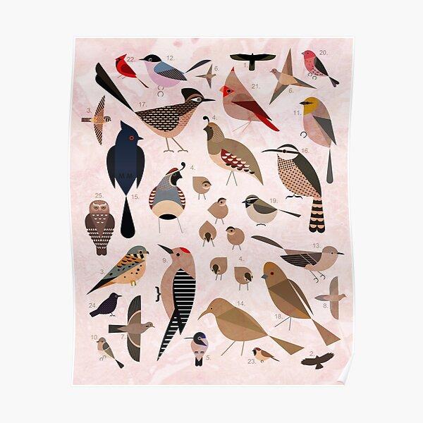 Sonoran Birds Poster