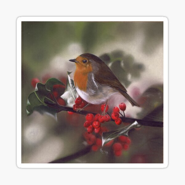 Winter Robin and Berries Sticker