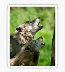 The Howling Sticker