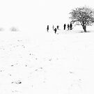 A total whiteout by Leigh Evans