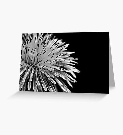 First dandelion Greeting Card