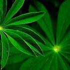 Green Again ! by Elfriede Fulda