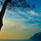 The cliffs at Los Gigantes, Tenerife by Thomas Tolkien