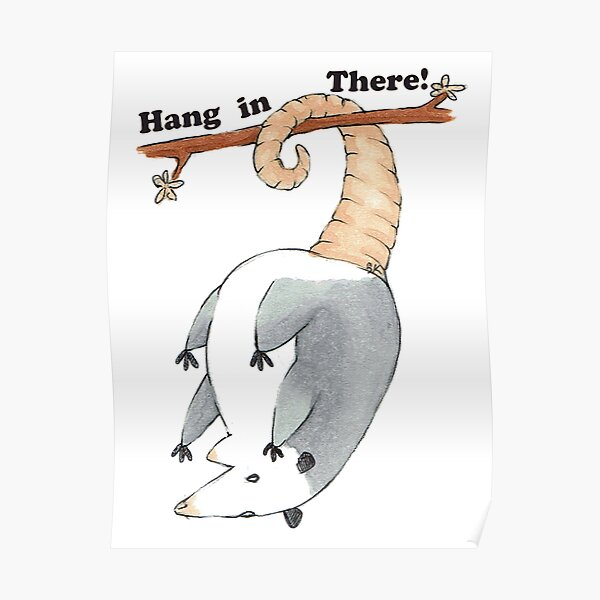 Hang In There Possum Poster