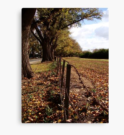 Twixt Avenue and Moon Canvas Print