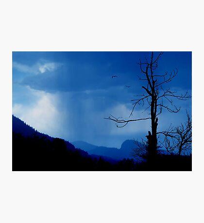 Shadows in the rain Photographic Print