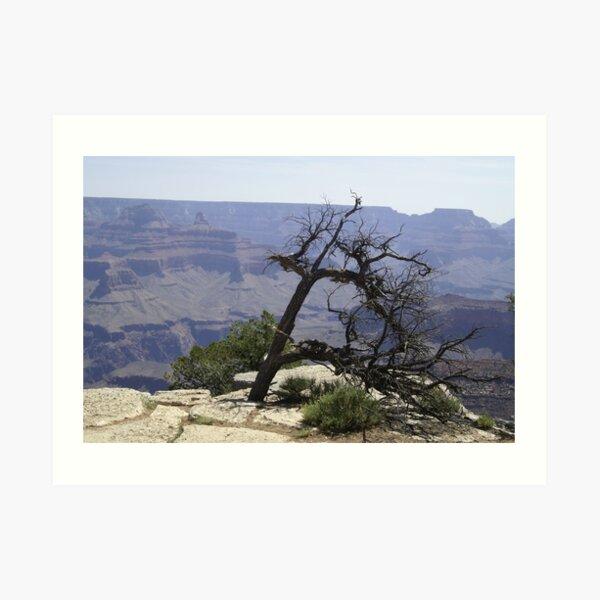 Grand Canyon - South Face Art Print