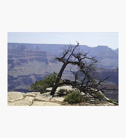 Grand Canyon - South Face Photographic Print