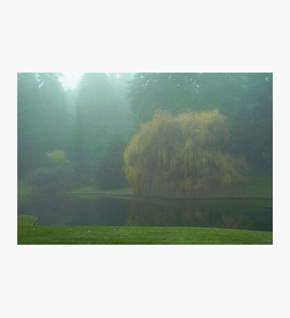 Puget Sound - Mists of Autumn Photographic Print