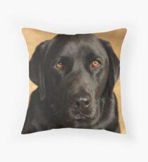 Brown Eyed Boy Throw Pillow