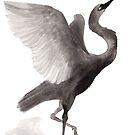 « Sumi-e Crane » par Threeleaves