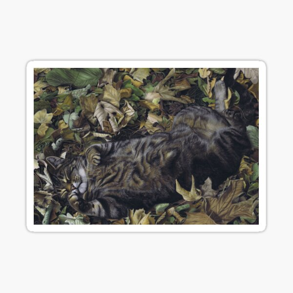 Tabby cat in autumn leaves  Sticker