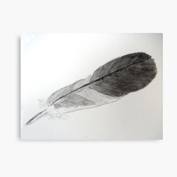 Feather for Drawing Day Canvas Print
