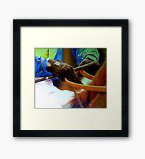 jockey Framed Print