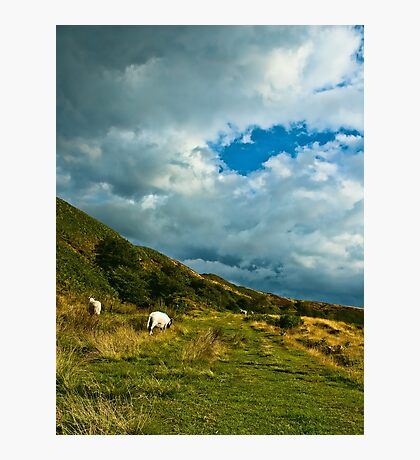 Newtondale, near Skelton Tower Photographic Print