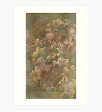 Hortensien Art Print