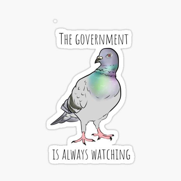 Birds Aren't Real Sticker