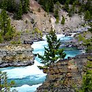 The Wild River by rocamiadesign