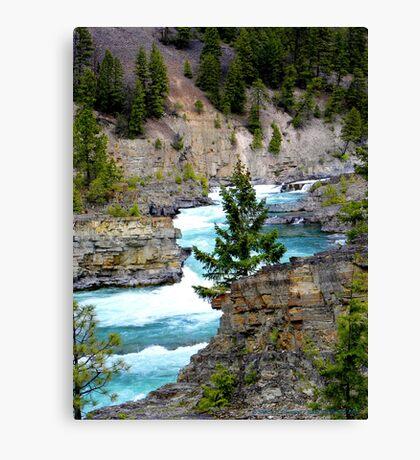 The Wild River Canvas Print