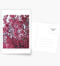 Magical Cherry Blossoms - Dark Pink Floral Abstract Art - Springtime Postcards