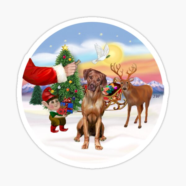 Santa's Treat for his Rhodesian Ridgeback Sticker