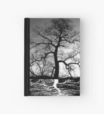 Tree Roots And Tree Hardcover Journal