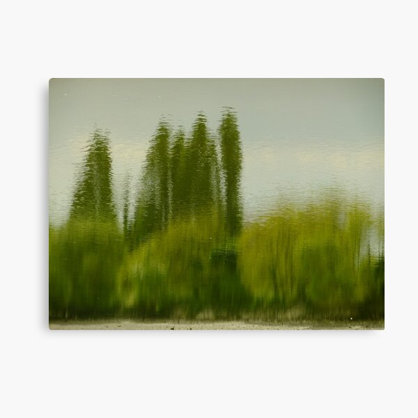 Lunch time Impressionism Canvas Print